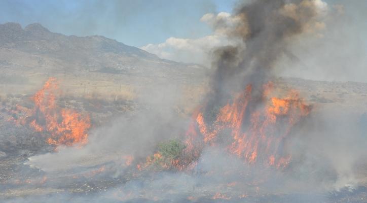 Dikmen'de dün öğle saatlerinde çıkan yangın korkuttu