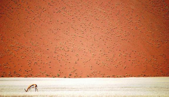 Yılın En İyi 15 Seyahat Fotoğrafı