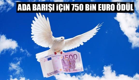 Ada barışı için 750,000 euro ödül