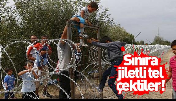 Avrupa'nın mülteci korkusu: Sınıra jiletli tel çekti