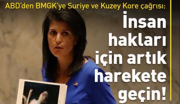 ABD'den BM Güvenlik Konseyi'ne Suriye ve Kuzey Kore için 'harekete geçin' çağrısı
