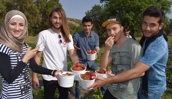Uluslararası Final Üniversitesi portakal ve çilek şenliği gerçekleştirildi