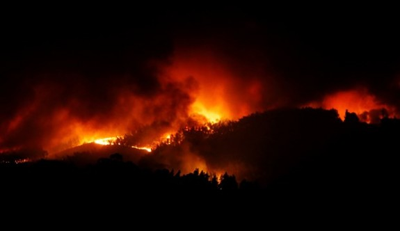 Portekiz'de yangın felaketi