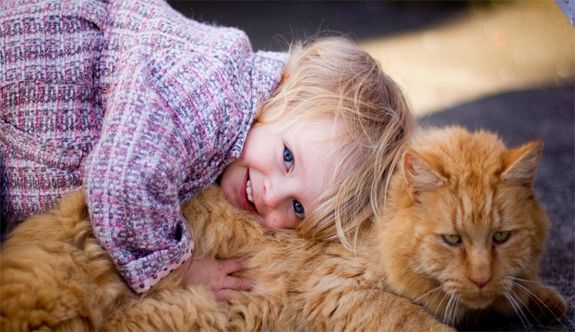 Kedilerle İyi İletişim Kurmanın 9 Miyvasal Yolu