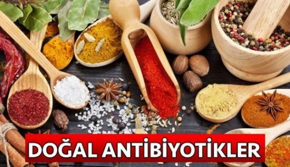 Doğal Antibiyotikler