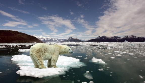 12 metropol belediye iklim değişikliğine karşı savaşacak
