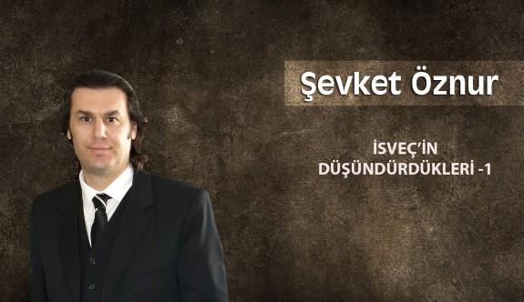 İSVEÇ'İN DÜŞÜNDÜRDÜKLERİ -1-