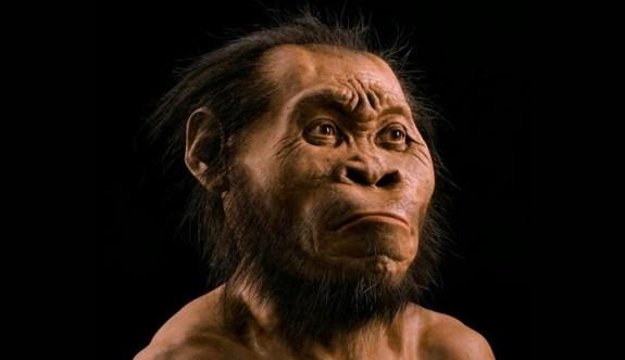 Yeni Bir İnsan Türü Bulundu: Homo Naledi