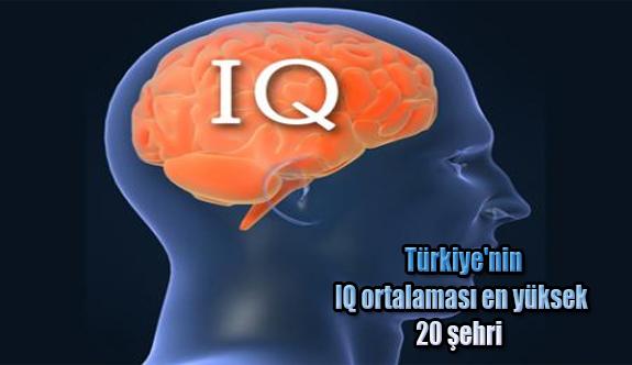 Türkiye'nin IQ ortalaması en yüksek 20 şehri belli oldu