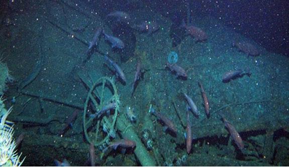 Avustralya'nın ilk denizaltısı 103 yıl sonra bulundu