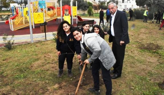 Girne'yi ağaçlandırma çalışmaları sürüyor