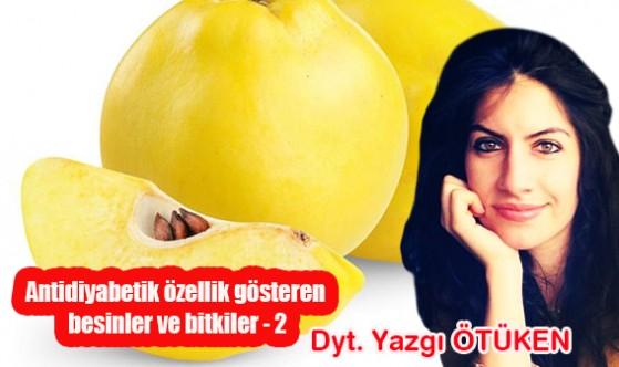 Antidiyabetik özellik gösteren besinler ve bitkiler (2)