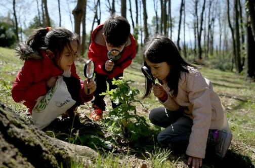 Çocuklara Orman sevgisi kazandırmalıyız