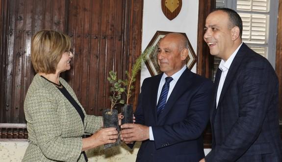 Meral Akıncı'dan Belediyelere 2 bin fidan bağışı