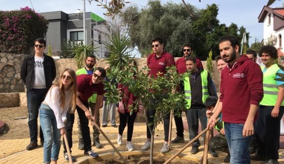 Ozanköy çocuk parkına 35 ağaç diktiler