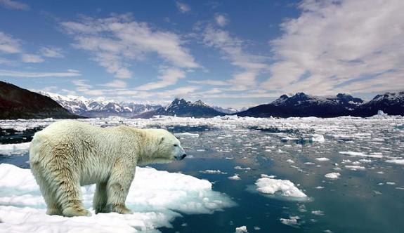 Antarktika'da deniz altı buzul erimesi alarm veriyor