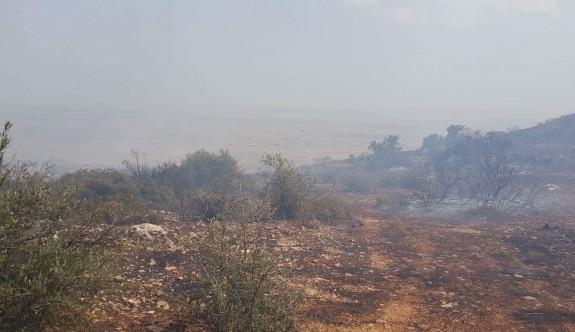Alevkayası bölgesinde orman yangını
