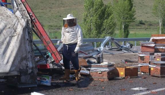 Bayburt'ta arı kovanı yüklü TIR devrildi