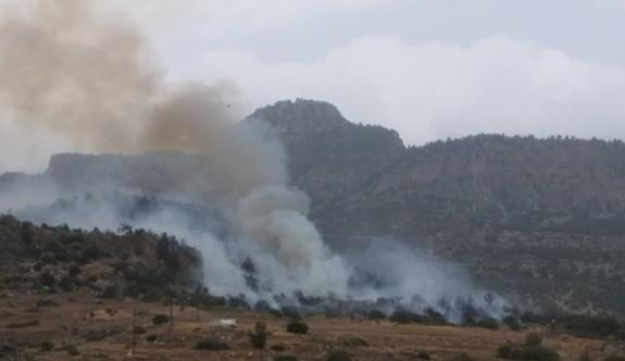 Taşkent-Güngör arasında yangın