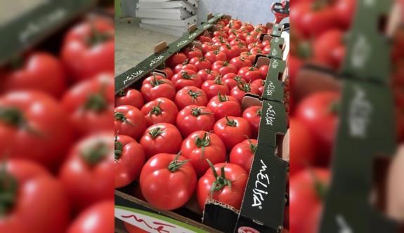 İthal domateste limitüstü kalıntı