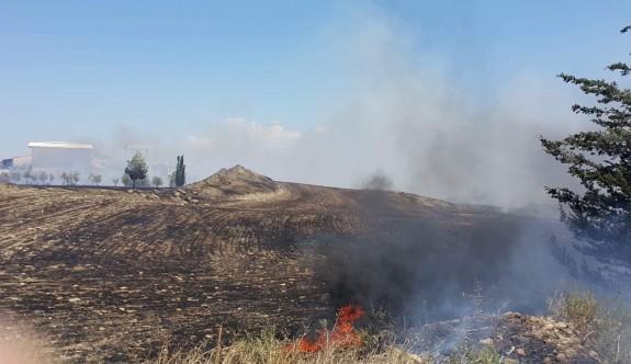 Lefkoşa-Girne anayolundaki yangında 70 dönüm arazi ve ağaçlar yandı