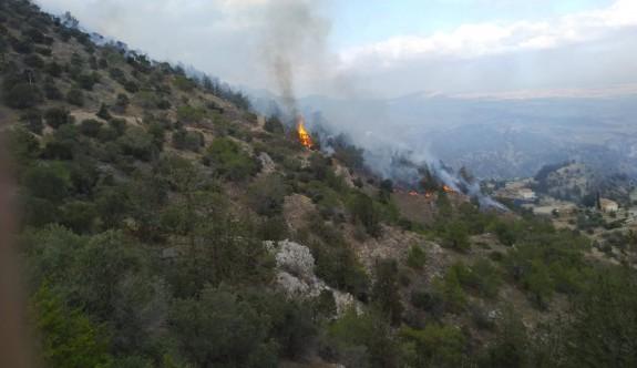 Yamaçköy'de orman yangını kontrol altına alındı