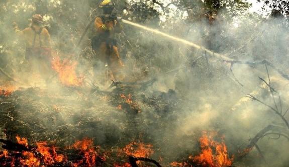 ABD'deki yangında ölü sayısı 6'ya çıktı