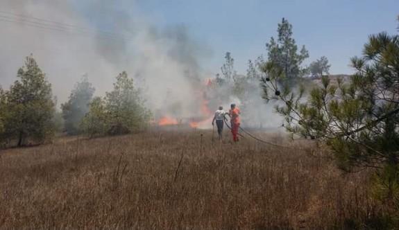 Alayköy'deki yangın kontrol altında