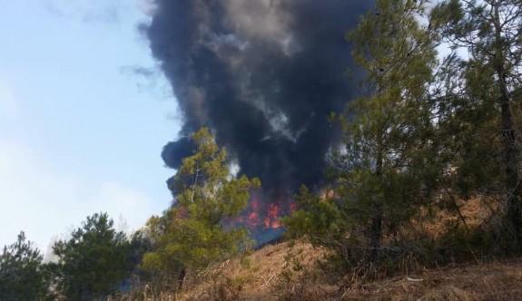 Geçitköy'de korkutan yangın