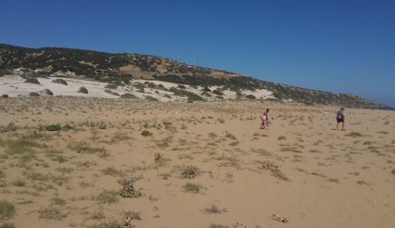 Altınkum sahili tertemiz yapıldı