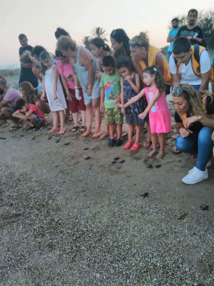 Caretta Caretta yavruları deniz ile buluşturuldu