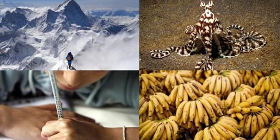 Hiç Duymadığınız  8 İlginç Bilgi