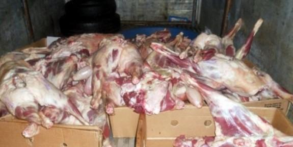 Vadili'de 1490 kilo kaçak dana ve kuzu eti ele geçirildi