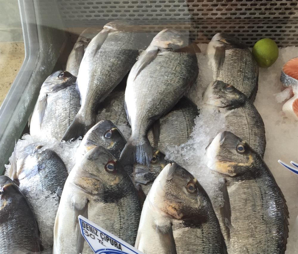 """""""'Çipura balığı' konusunda tüketici yanıltılıyor"""""""