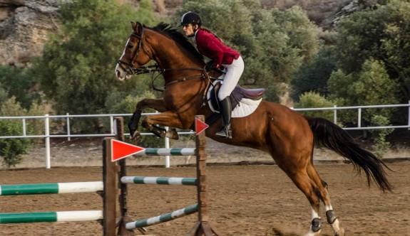 Atlar, Güzelyurt'ta engelleri aşacak