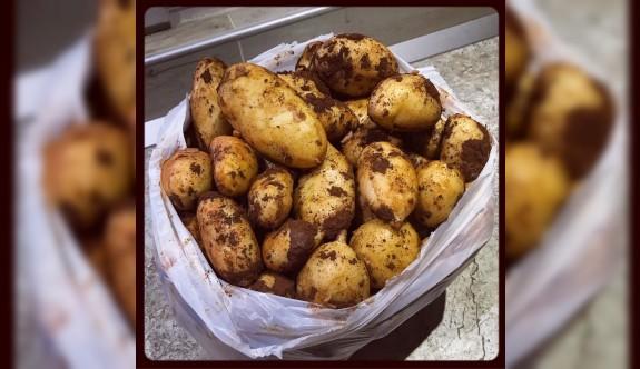 """""""Patates fiyatları ideal hasat zamanı gelince düşecek"""""""