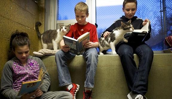Çocukların sömestr tatilinde okuması gereken kitaplar