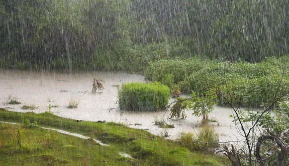 Tatlısu'ya 52 kg yağış