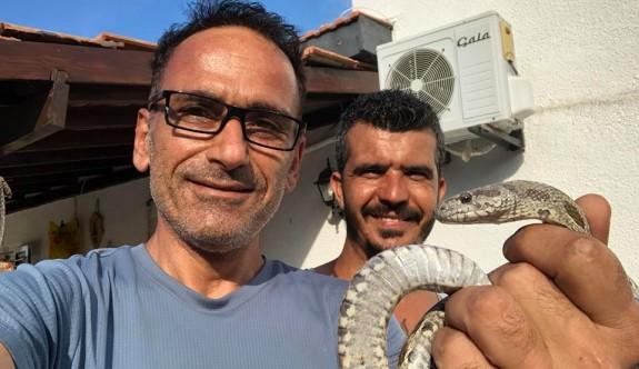 Doğa dostu Kıbrıslı Türk profesör hayatını kaybetti