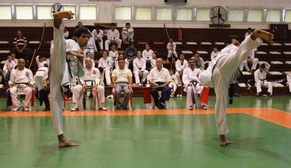 Taekwondoda lig heyecanı yaşanıyor