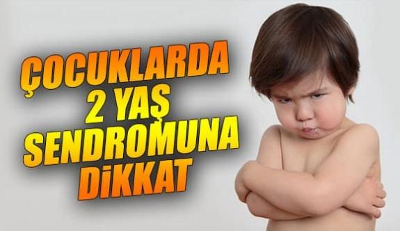 Anne ve Babaların Dikkatine: Çocuklarda 2 Yaş Sendromu
