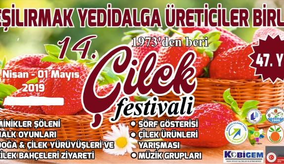 Çilek Festivali yarın başlıyor
