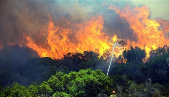 Orman Dairesi'nden yangınlar konusunda uyarı