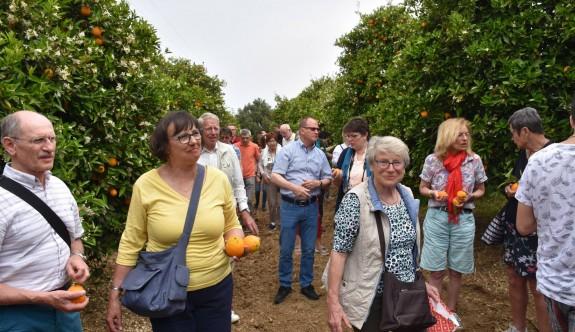 Turistlere portakal bahçesi turu