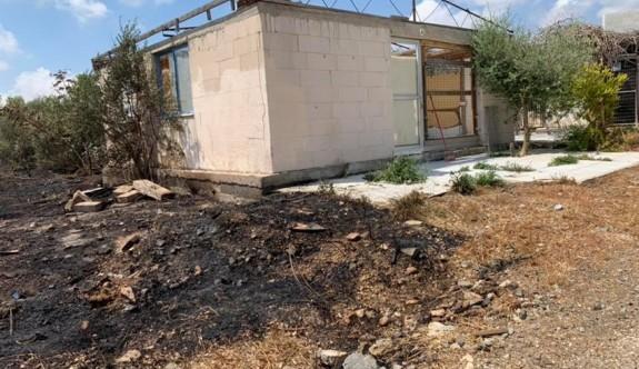 Baf'ta köpek barınağı kundaklandı