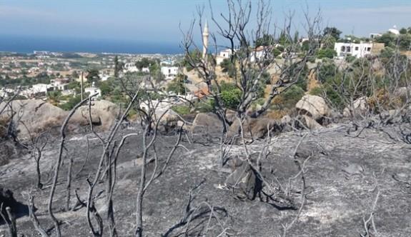 Karşıyaka'da yangın 5 dönüm araziye zarar verdi