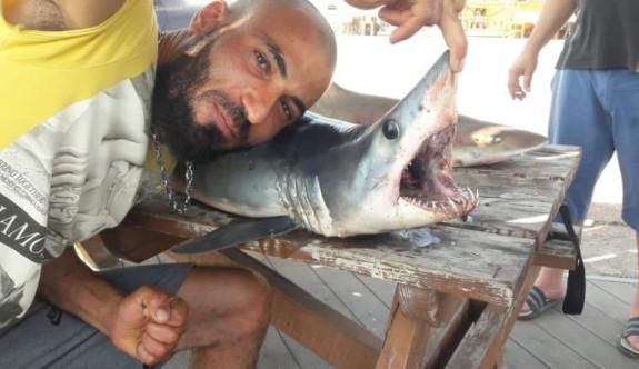 Mağusa sahilinde köpek balığı paniği