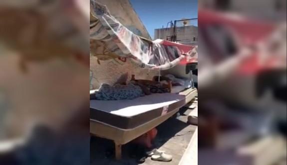Girne'de apartman damında yaşayan 7 kaçak yakalandı