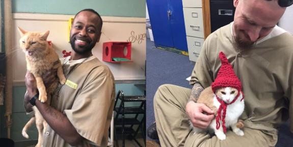 Kedilerin hayatları değiştirdiği hapishane