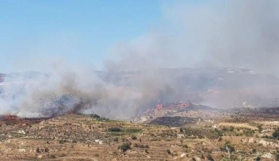 Limasol'da büyük yangın